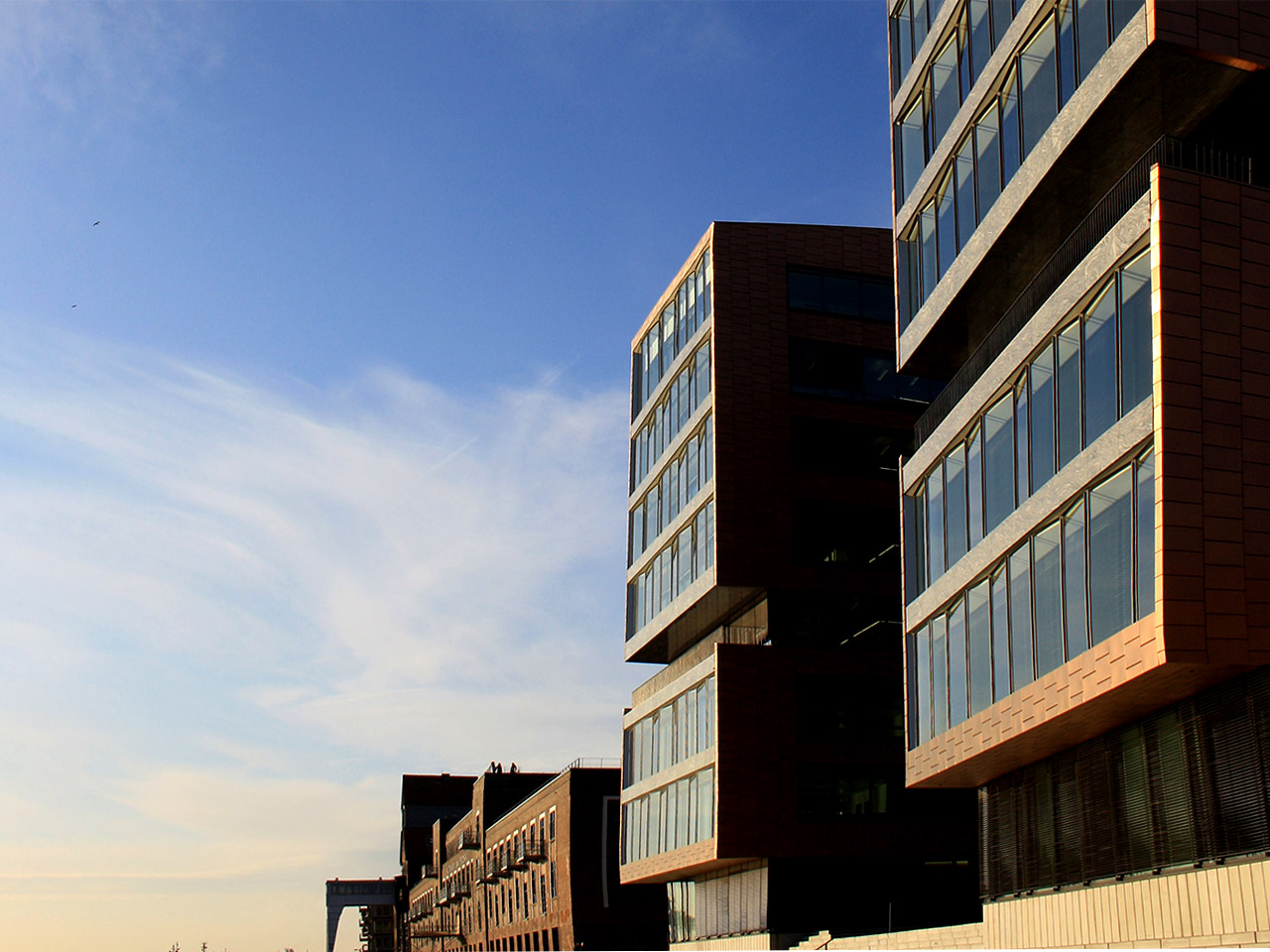 Twin Tower Dachterrasse, Terrassendielen