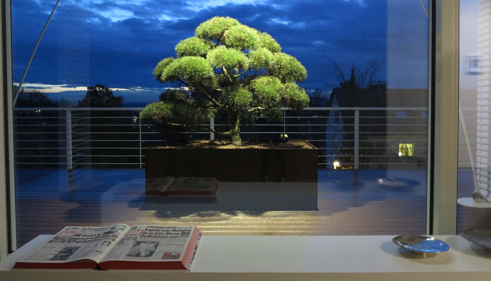 Dachterrasse wpc designdielen