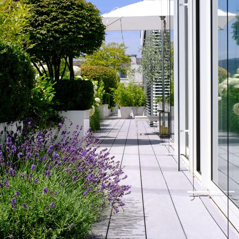 Grauer WPC Terrassenbelag auf Terrasse mit großzügiger Bepflanzung